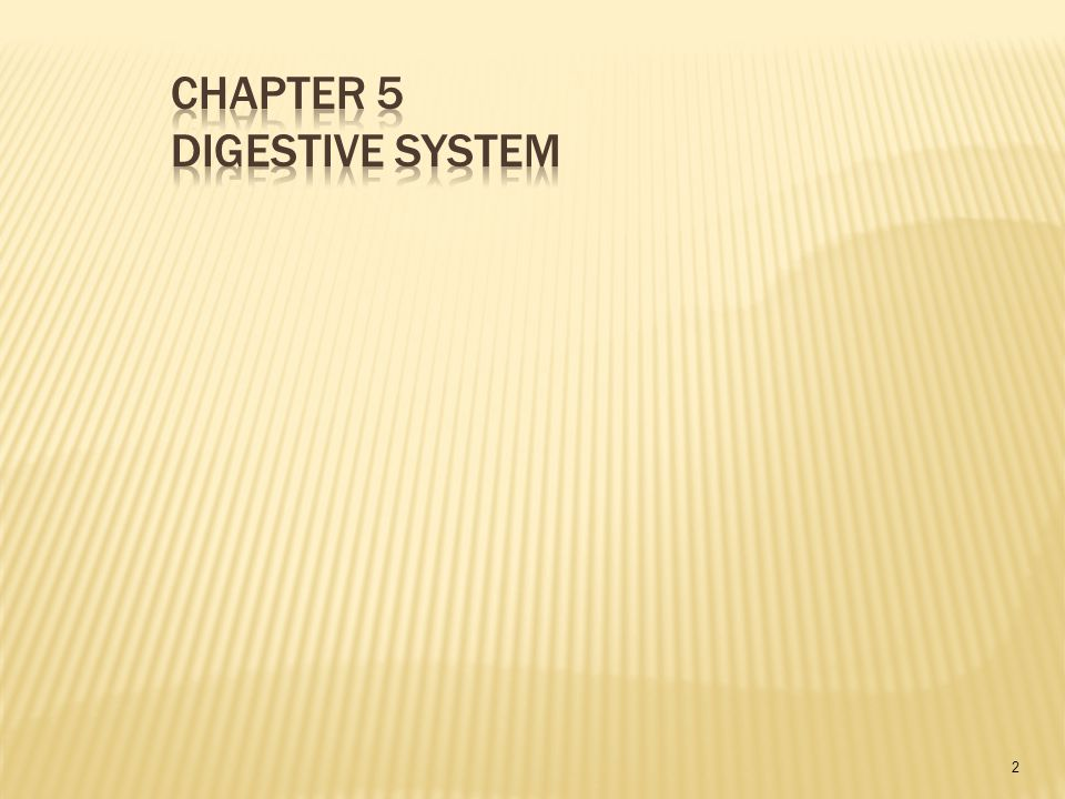  Name the organs of the digestive system and describe their locations and functions.