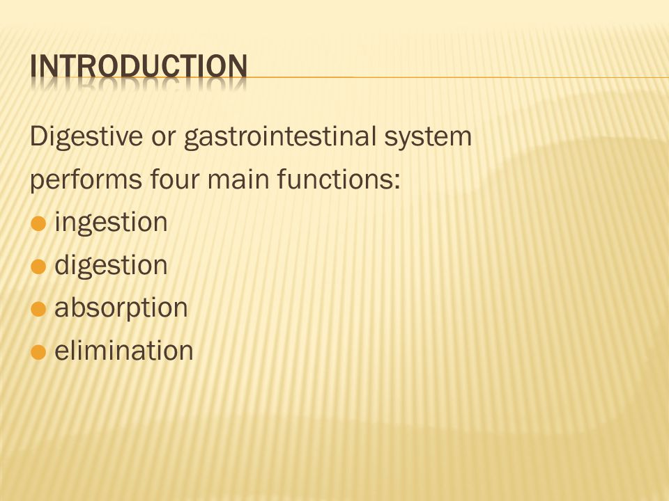 Digestive or gastrointestinal system performs four main functions:  ingestion  digestion  absorption  elimination