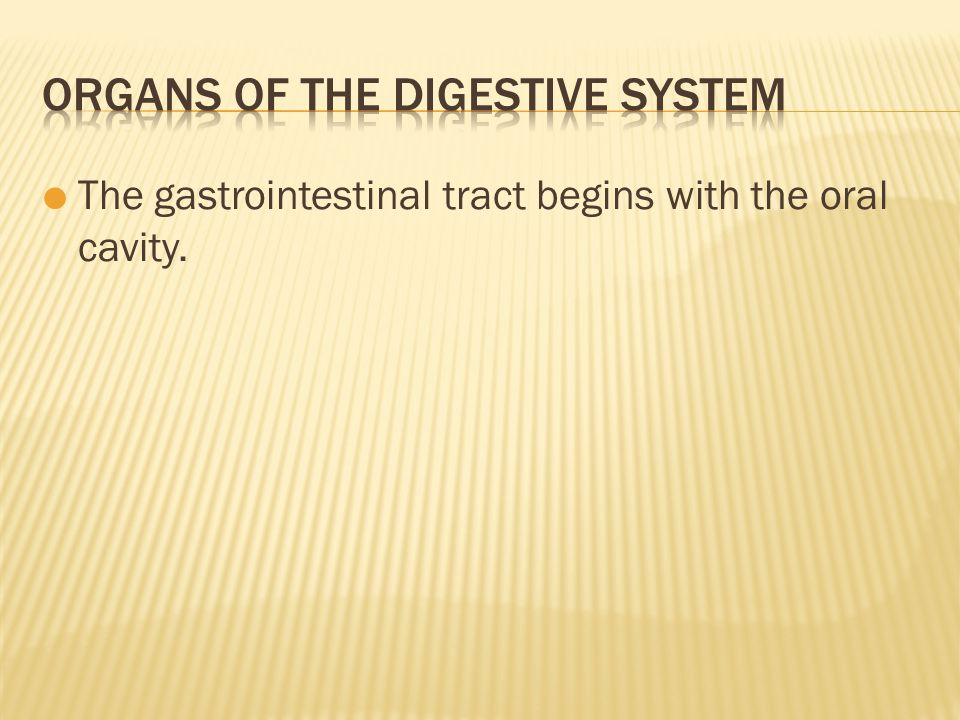  The gastrointestinal tract begins with the oral cavity.