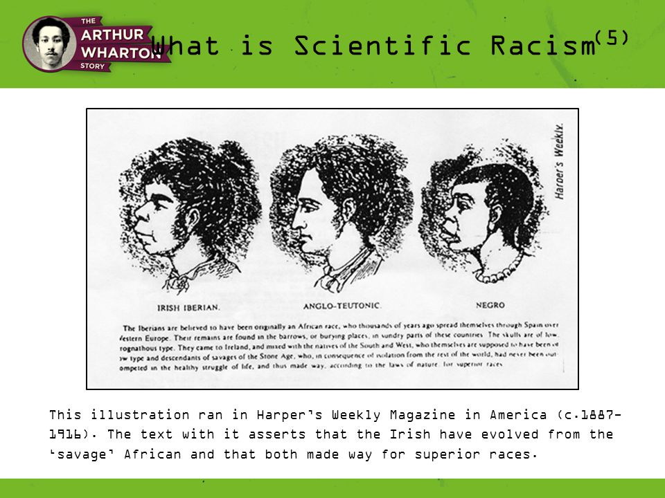 What is Scientific Racism (5) This illustration ran in Harper's Weekly Magazine in America (c.1887- 1916).