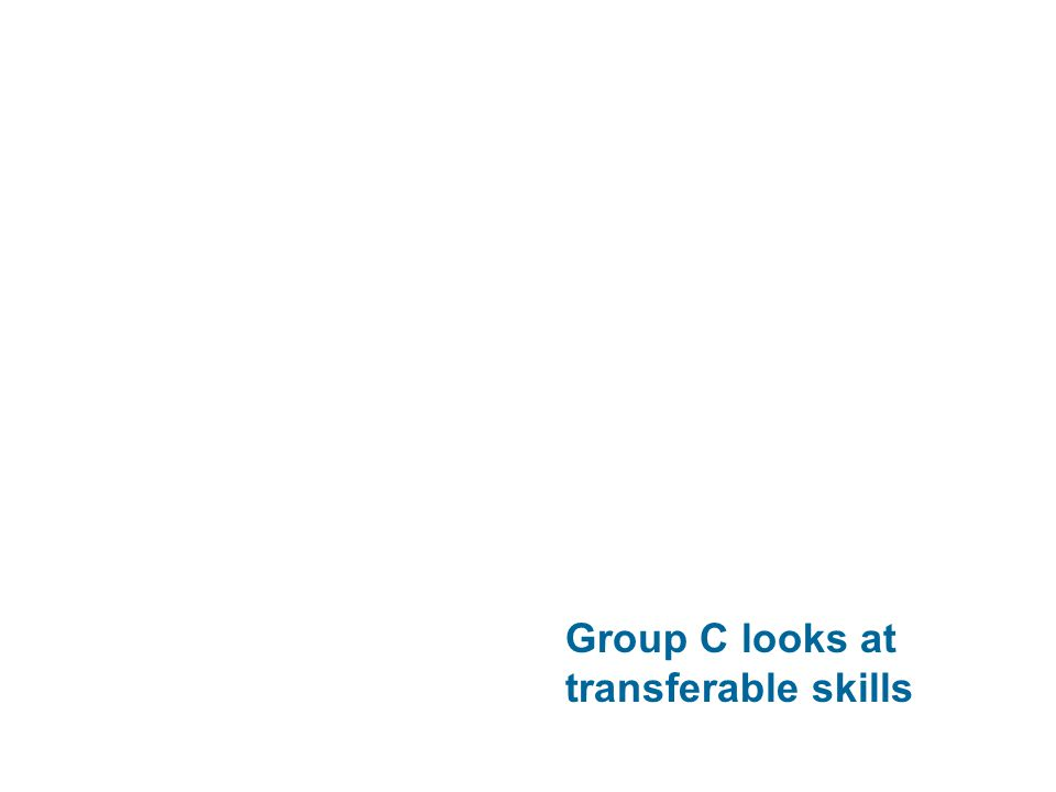 Group C looks at transferable skills