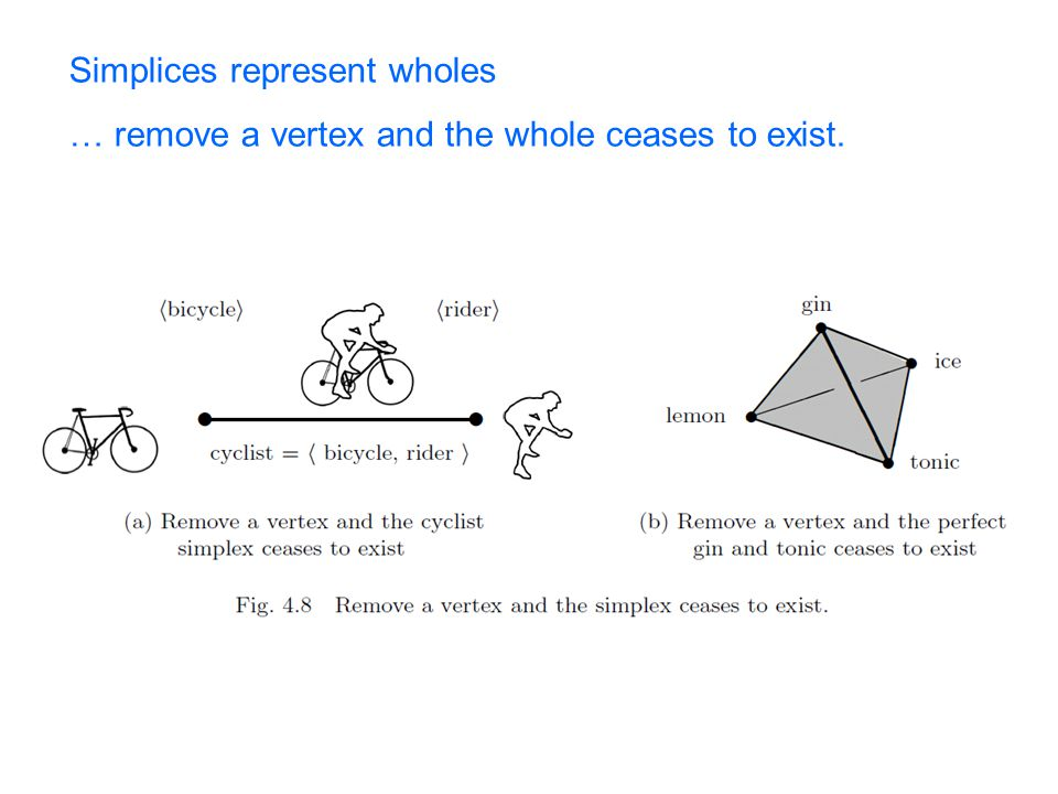 Simplices represent wholes … remove a vertex and the whole ceases to exist.