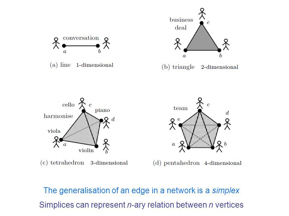 The generalisation of an edge in a network is a simplex Simplices can represent n-ary relation between n vertices