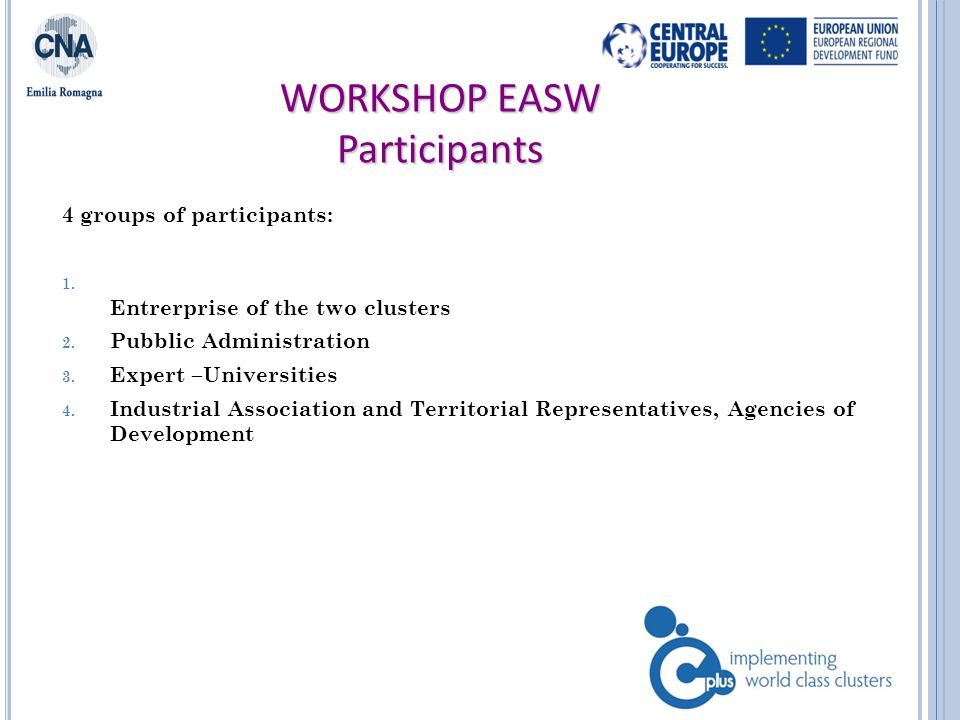 WORKSHOP EASW Participants 4 groups of participants: 1.
