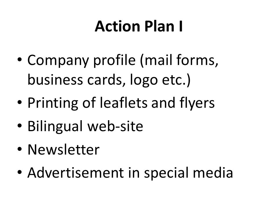 Action Plan I Company profile (mail forms, business cards, logo etc.) Printing of leaflets and flyers Bilingual web-site Newsletter Advertisement in special media