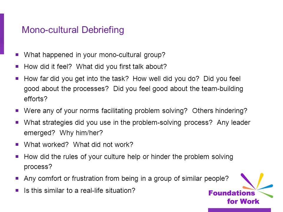 Mono-cultural Debriefing  What happened in your mono-cultural group.