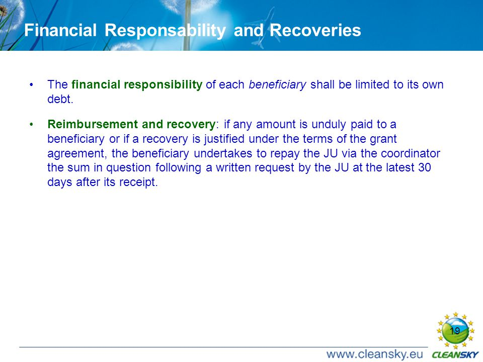 19 Financial Responsability and Recoveries The financial responsibility of each beneficiary shall be limited to its own debt.