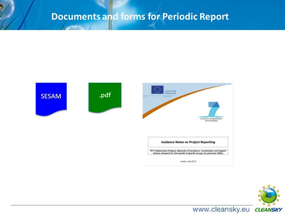 40 Documents and forms for Periodic Report SESAM.pdf