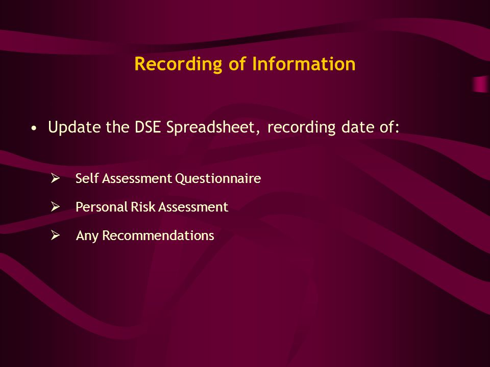 Recording of Information Update the DSE Spreadsheet, recording date of:  Any Recommendations  Personal Risk Assessment  Self Assessment Questionnai