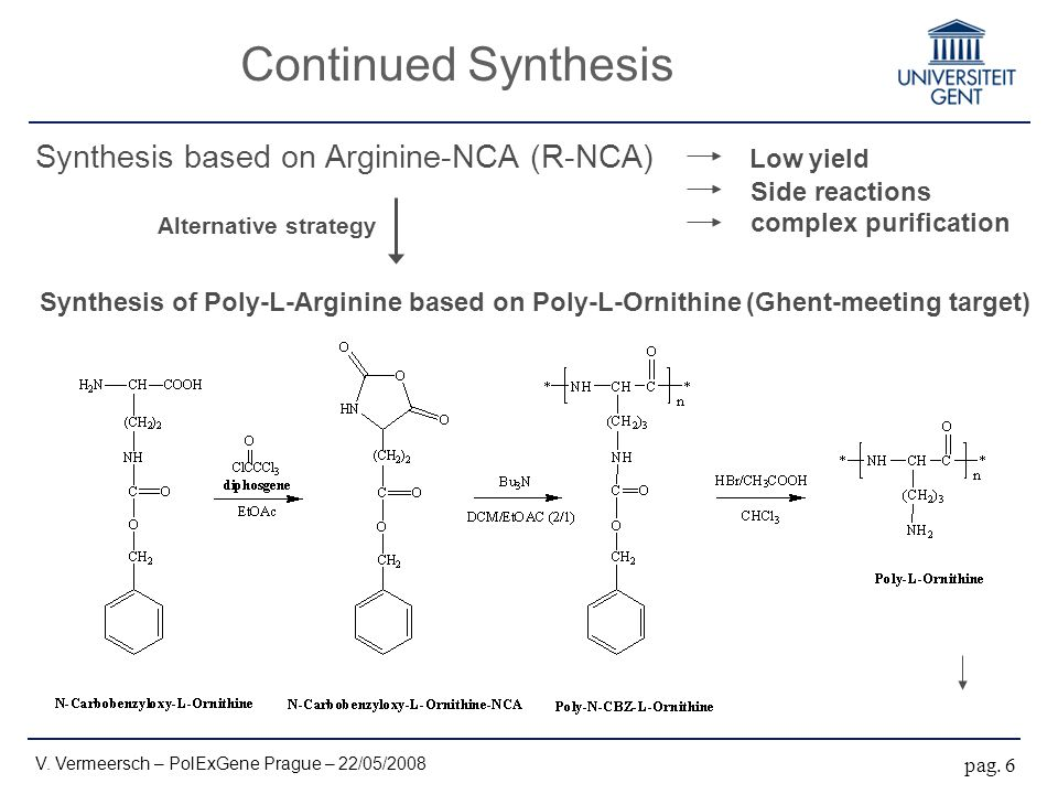 Continued Synthesis pag. 6 Synthesis based on Arginine-NCA (R-NCA) Low yield Side reactions complex purification Synthesis of Poly-L-Arginine based on