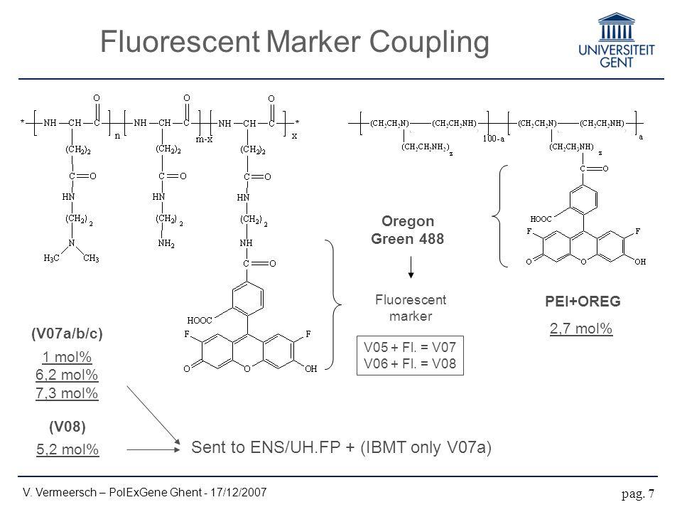 Fluorescent Marker Coupling V. Vermeersch – PolExGene Ghent - 17/12/2007 pag.