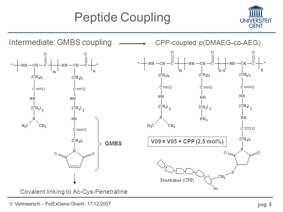 GMBS Covalent linking to Ac-Cys-Penetratine Intermediate: GMBS coupling Peptide Coupling V. Vermeersch – PolExGene Ghent - 17/12/2007 pag. 8 CPP-coupl