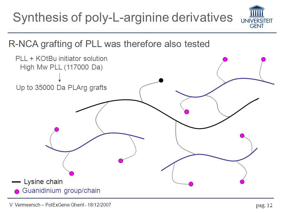 Synthesis of poly-L-arginine derivatives V. Vermeersch – PolExGene Ghent - 18/12/2007 pag.