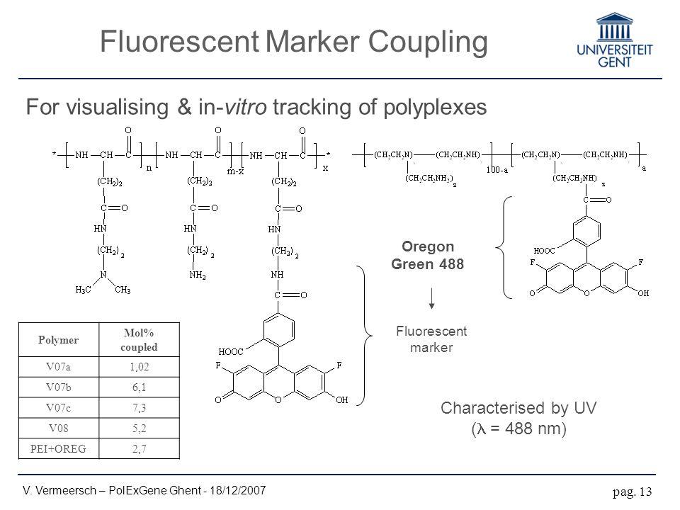 Fluorescent Marker Coupling V. Vermeersch – PolExGene Ghent - 18/12/2007 pag.