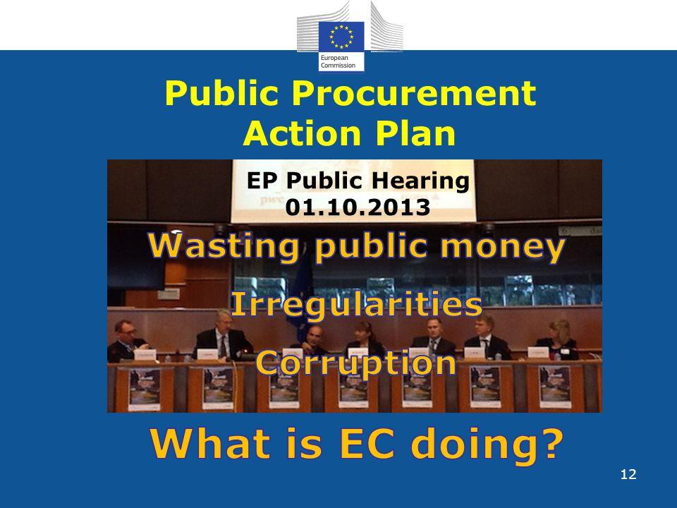 12 Public Procurement Action Plan EP Public Hearing 01.10.2013