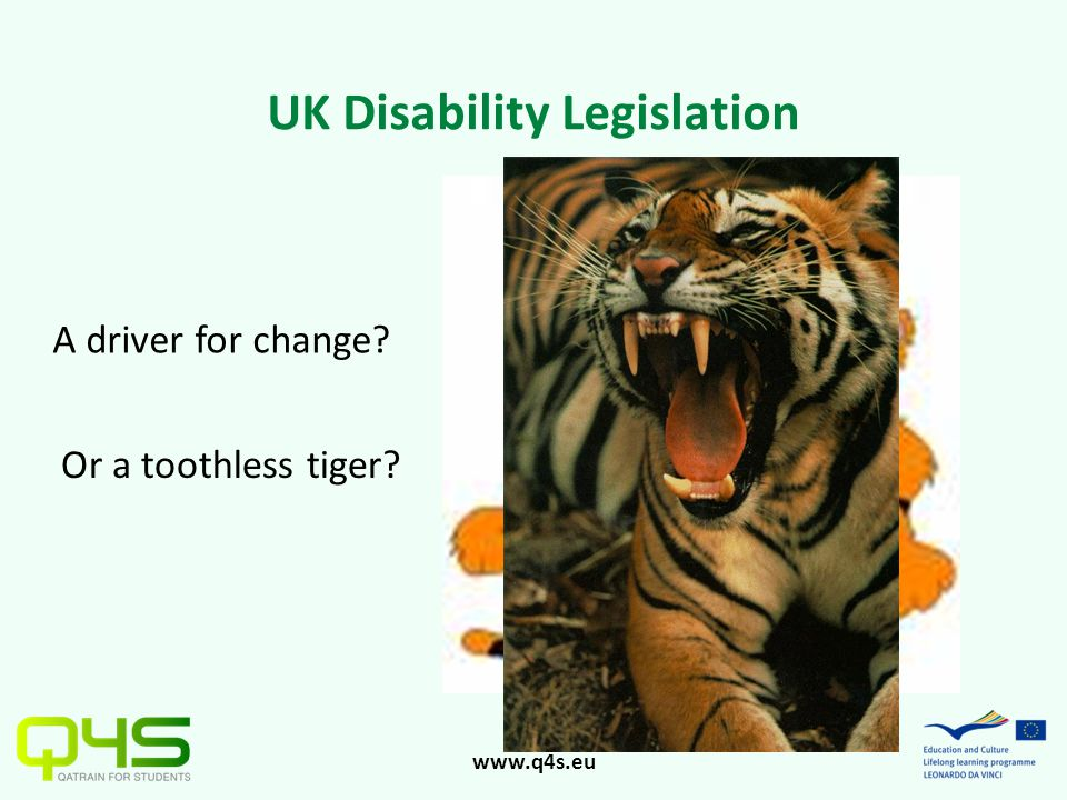 www.q4s.eu UK Disability Legislation A driver for change? Or a toothless tiger?