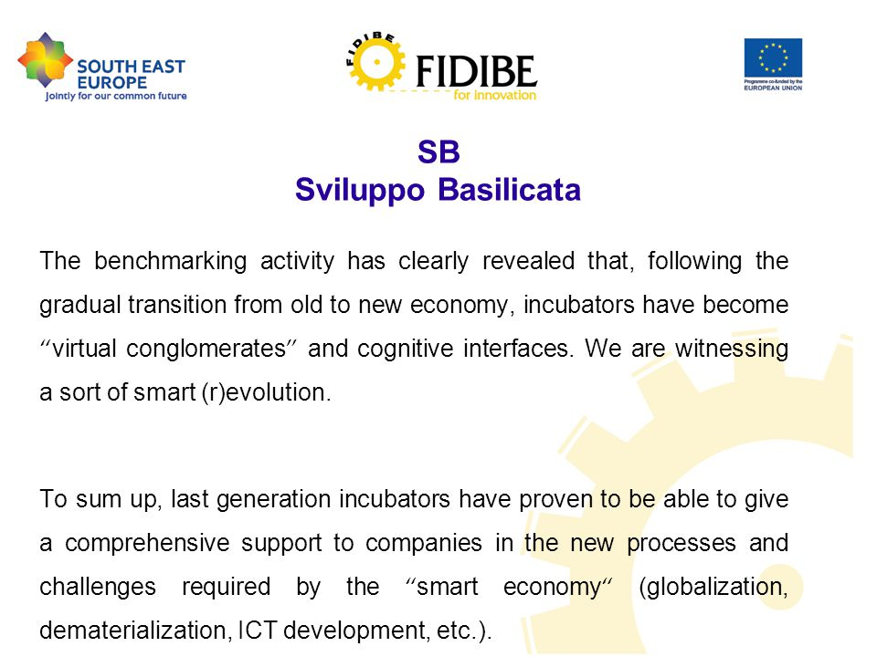 SB Sviluppo Basilicata The benchmarking activity has clearly revealed that, following the gradual transition from old to new economy, incubators have become virtual conglomerates and cognitive interfaces.