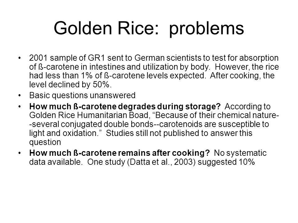Golden Rice: problems 2001 sample of GR1 sent to German scientists to test for absorption of ß-carotene in intestines and utilization by body.