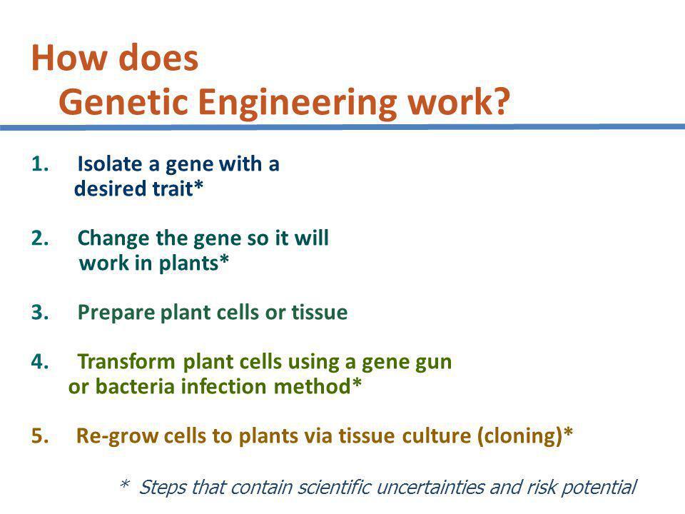 How does Genetic Engineering work.