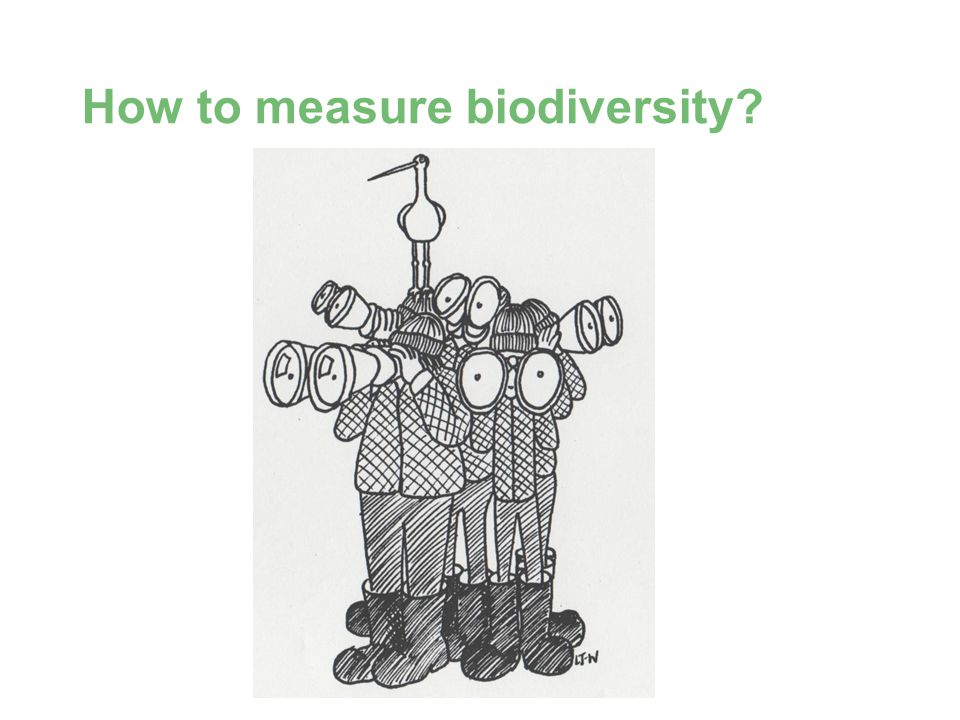 BD SKILLS – Skills for Local Biodiversity How to measure biodiversity