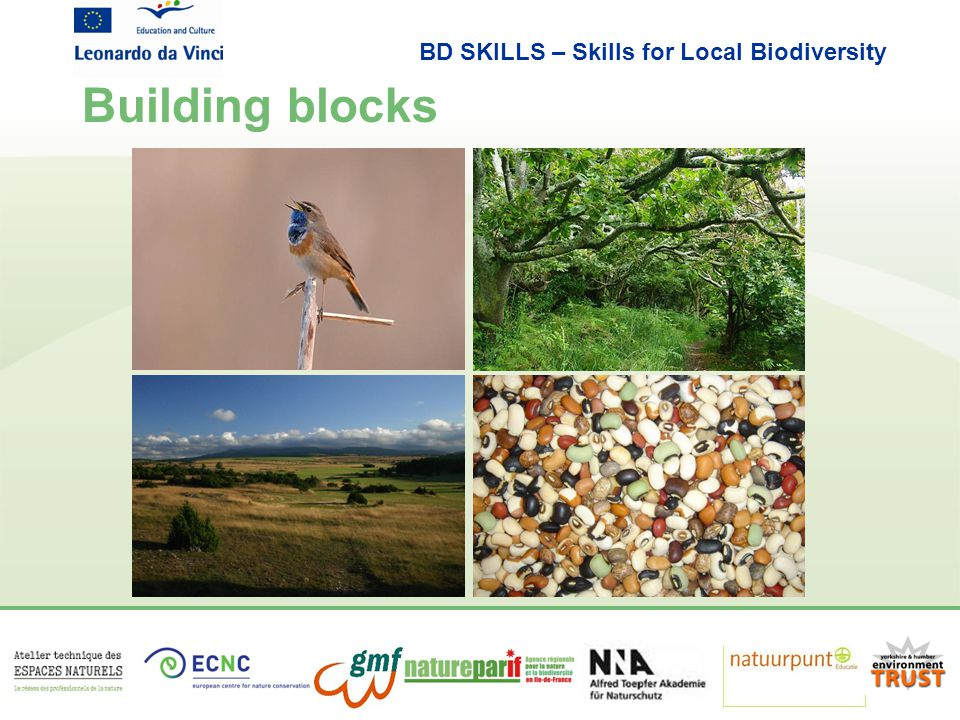 BD SKILLS – Skills for Local Biodiversity Building blocks