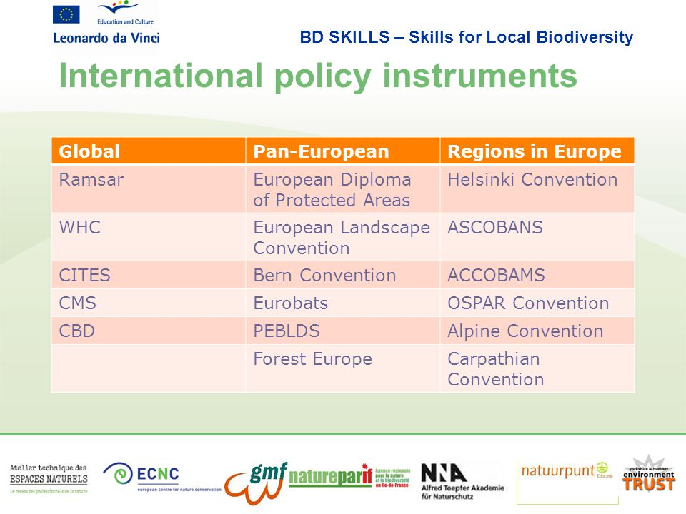 BD SKILLS – Skills for Local Biodiversity International policy instruments GlobalPan-EuropeanRegions in Europe RamsarEuropean Diploma of Protected Areas Helsinki Convention WHCEuropean Landscape Convention ASCOBANS CITESBern ConventionACCOBAMS CMSEurobatsOSPAR Convention CBDPEBLDSAlpine Convention Forest EuropeCarpathian Convention