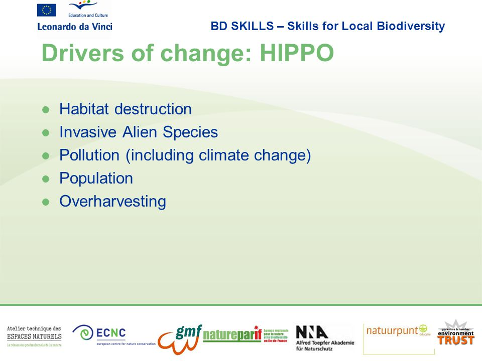 BD SKILLS – Skills for Local Biodiversity Drivers of change: HIPPO l Habitat destruction l Invasive Alien Species l Pollution (including climate change) l Population l Overharvesting
