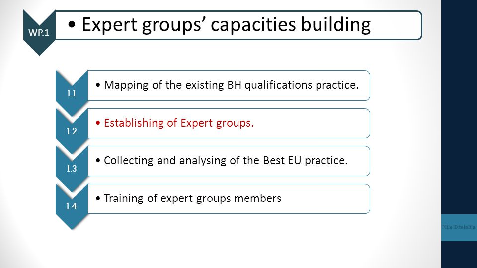 WP.1 Expert groups' capacities building Mile Dželalija 1.1 Mapping of the existing BH qualifications practice. 1.2 Establishing of Expert groups. 1.3