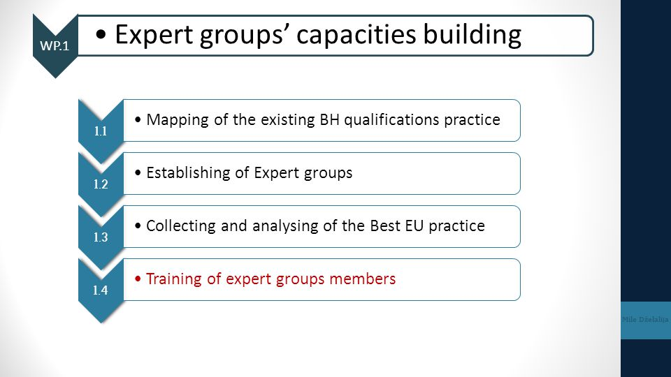 WP.1 Expert groups' capacities building Mile Dželalija 1.1 Mapping of the existing BH qualifications practice 1.2 Establishing of Expert groups 1.3 Co