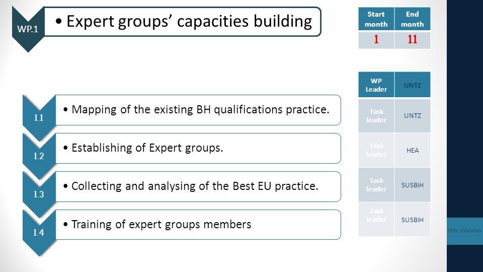 WP.3 Capacity building of HEIs Mile Dželalija 3.1 Establishing of Working groups at HEIs 3.2 Creating Handbook for writing LOs 3.3 Training of working groups members