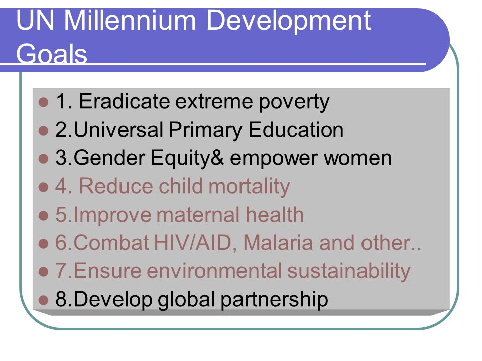 UN Millennium Development Goals 1.
