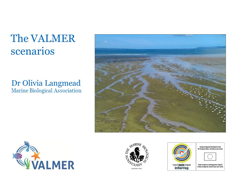 The VALMER scenarios Dr Olivia Langmead Marine Biological Association