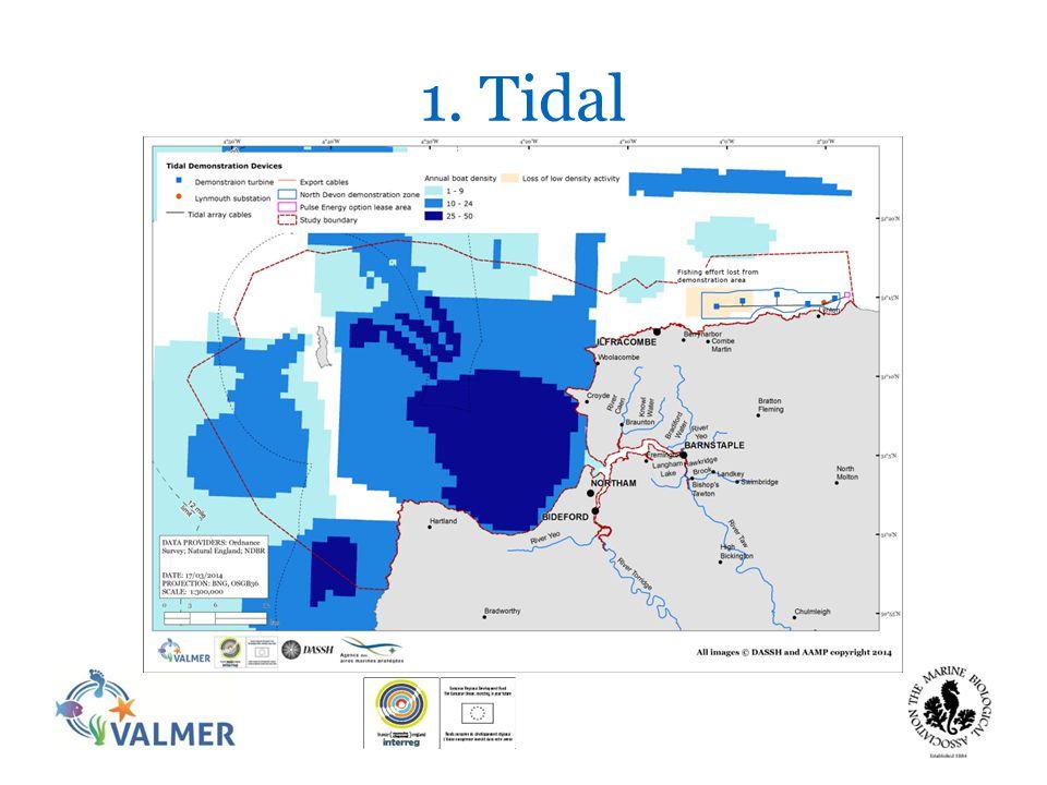 1. Tidal