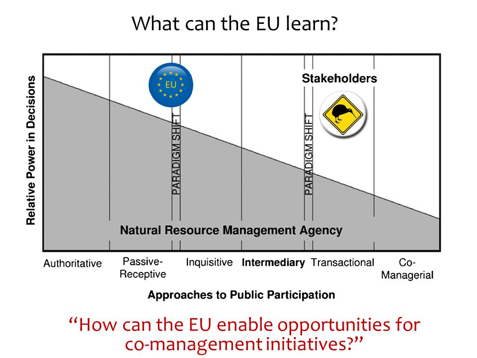 What can the EU learn How can the EU enable opportunities for co-management initiatives