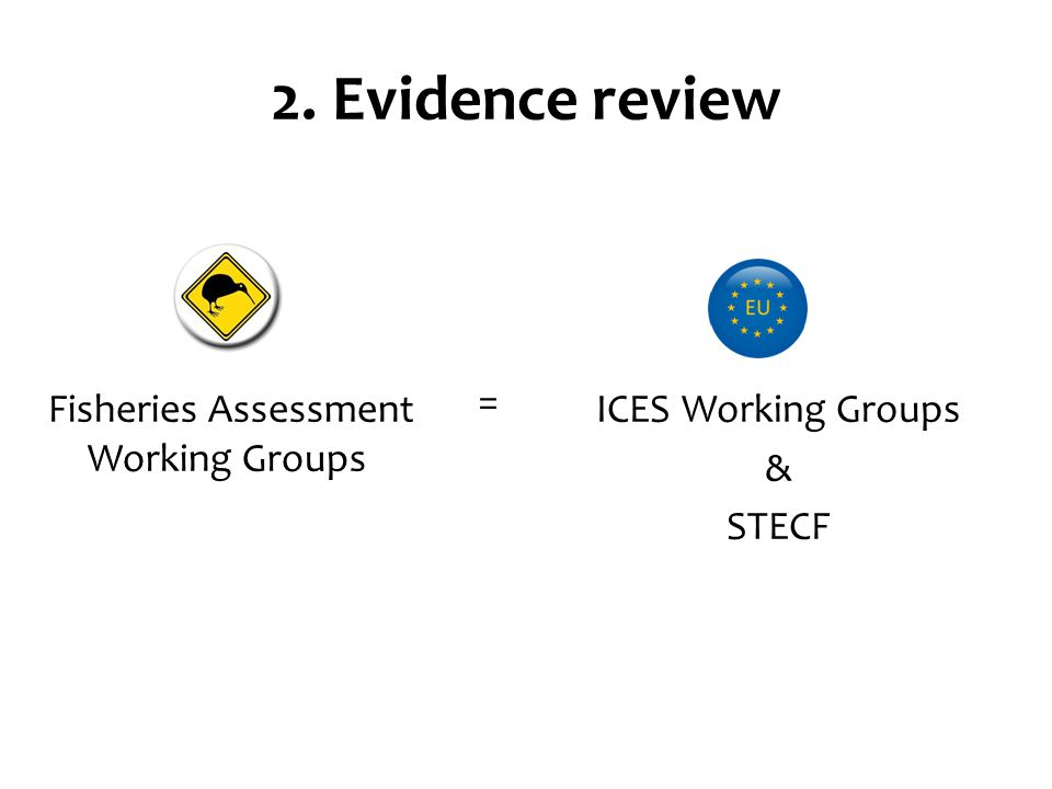 2. Evidence review Fisheries Assessment Working Groups ICES Working Groups & STECF =