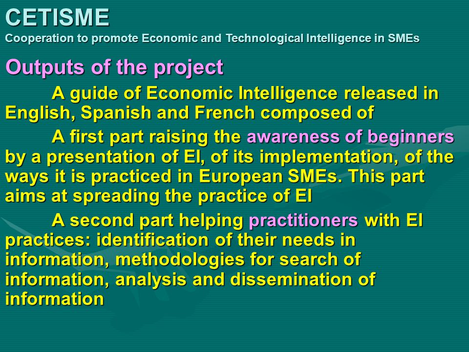 Outputs of the project A guide of Economic Intelligence released in English, Spanish and French composed of A first part raising the awareness of beginners by a presentation of EI, of its implementation, of the ways it is practiced in European SMEs.