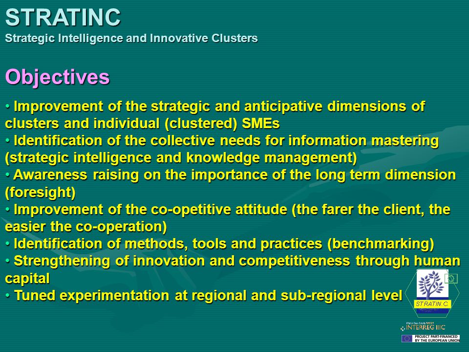 Improvement of the strategic and anticipative dimensions of clusters and individual (clustered) SMEs Improvement of the strategic and anticipative dim