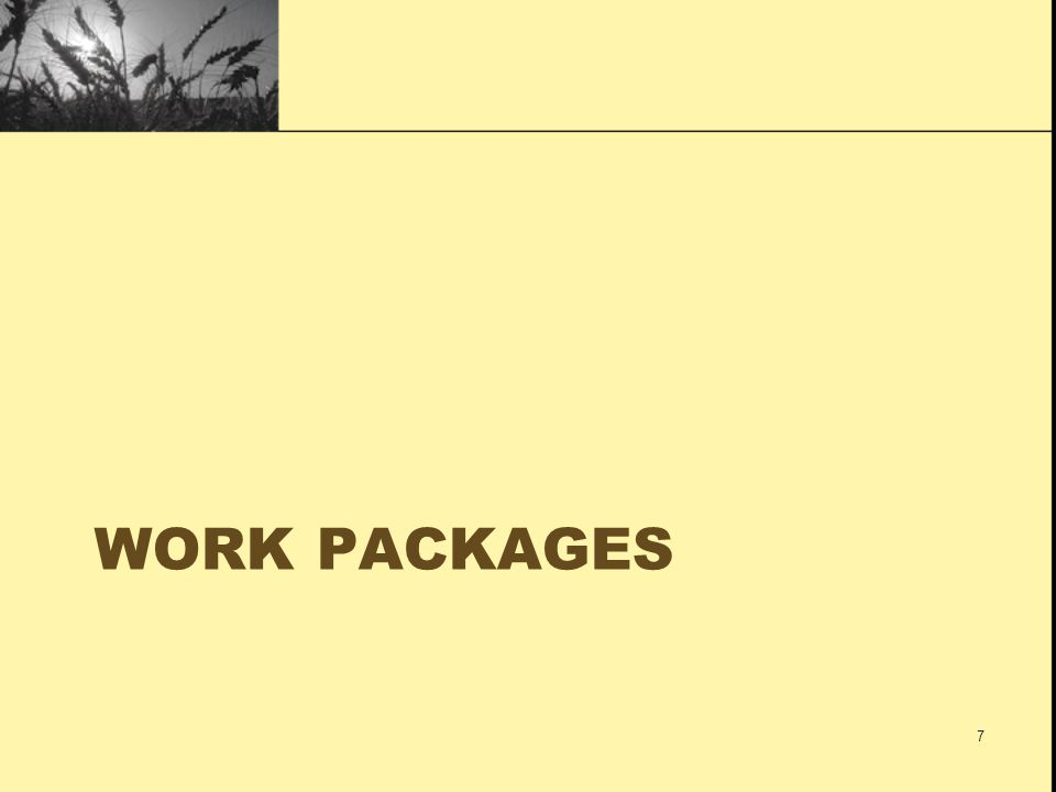 WORK PACKAGES 7