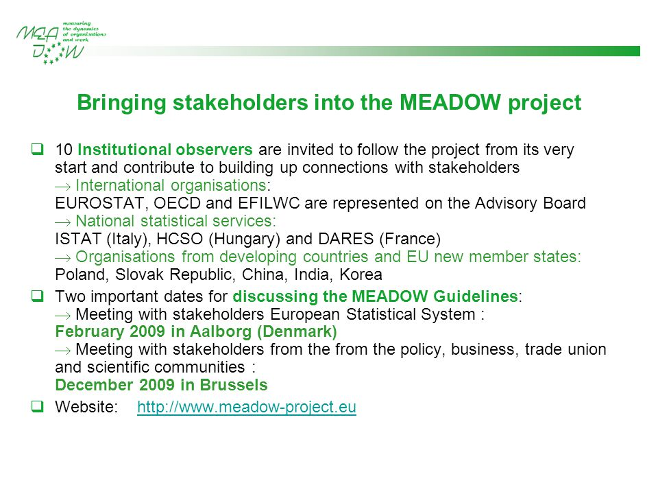 Bringing stakeholders into the MEADOW project  10 Institutional observers are invited to follow the project from its very start and contribute to building up connections with stakeholders  International organisations: EUROSTAT, OECD and EFILWC are represented on the Advisory Board  National statistical services: ISTAT (Italy), HCSO (Hungary) and DARES (France)  Organisations from developing countries and EU new member states: Poland, Slovak Republic, China, India, Korea  Two important dates for discussing the MEADOW Guidelines:  Meeting with stakeholders European Statistical System : February 2009 in Aalborg (Denmark)  Meeting with stakeholders from the from the policy, business, trade union and scientific communities : December 2009 in Brussels  Website: http://www.meadow-project.euhttp://www.meadow-project.eu