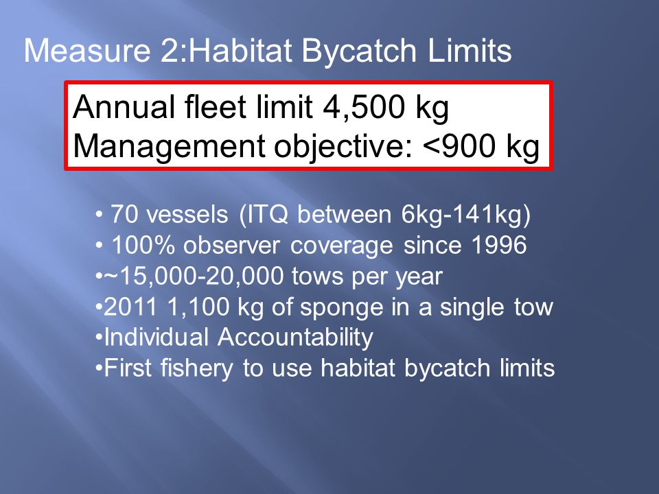 70 vessels (ITQ between 6kg-141kg) 100% observer coverage since 1996 ~15,000-20,000 tows per year 2011 1,100 kg of sponge in a single tow Individual A