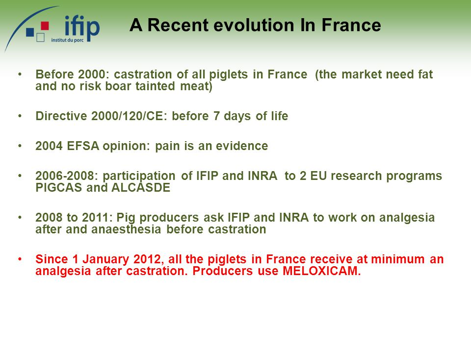 A Recent evolution In France Before 2000: castration of all piglets in France (the market need fat and no risk boar tainted meat) Directive 2000/120/CE: before 7 days of life 2004 EFSA opinion: pain is an evidence 2006-2008: participation of IFIP and INRA to 2 EU research programs PIGCAS and ALCASDE 2008 to 2011: Pig producers ask IFIP and INRA to work on analgesia after and anaesthesia before castration Since 1 January 2012, all the piglets in France receive at minimum an analgesia after castration.