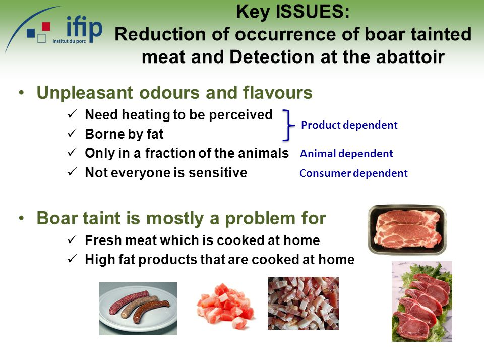 Key ISSUES: Reduction of occurrence of boar tainted meat and Detection at the abattoir Unpleasant odours and flavours Need heating to be perceived Borne by fat Only in a fraction of the animals Not everyone is sensitive Product dependent Animal dependent Consumer dependent Boar taint is mostly a problem for Fresh meat which is cooked at home High fat products that are cooked at home
