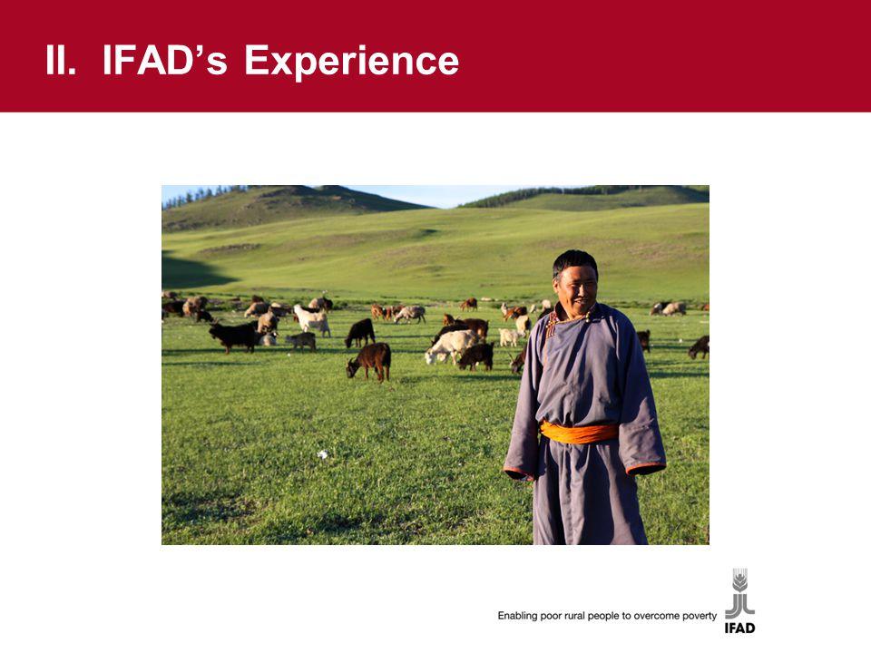 II. IFAD's Experience