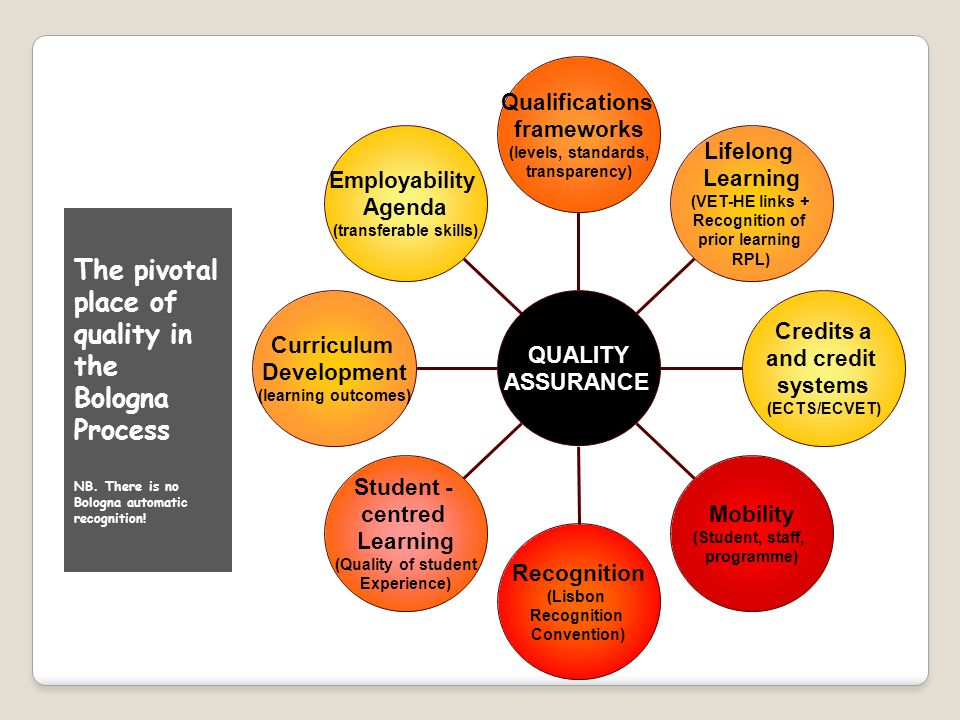 Qualifications frameworks (levels, standards, transparency) Lifelong Learning (VET-HE links + Recognition of prior learning RPL) Credits a and credit systems (ECTS/ECVET) Mobility (Student, staff, programme) Recognition (Lisbon Recognition Convention) Student - centred Learning (Quality of student Experience) Curriculum Development (learning outcomes) Employability Agenda (transferable skills) QUALITYASSURANCE The pivotal place of quality in the Bologna Process NB.