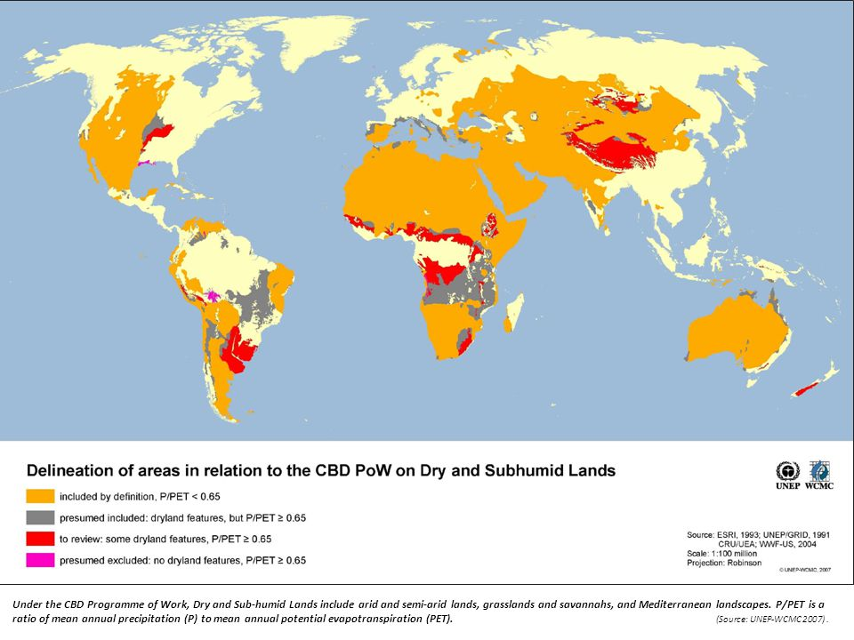 Under the CBD Programme of Work, Dry and Sub-humid Lands include arid and semi-arid lands, grasslands and savannahs, and Mediterranean landscapes. P/P