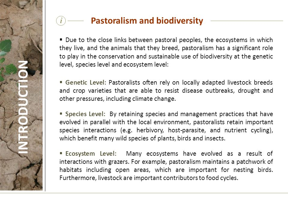 i  Due to the close links between pastoral peoples, the ecosystems in which they live, and the animals that they breed, pastoralism has a significant