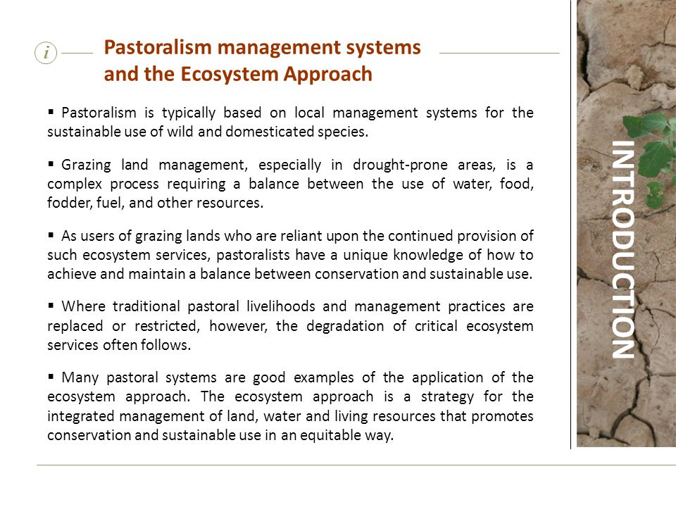  Pastoralism is typically based on local management systems for the sustainable use of wild and domesticated species.  Grazing land management, espe