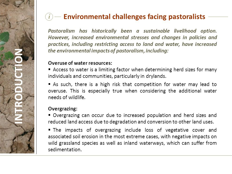i Pastoralism has historically been a sustainable livelihood option. However, increased environmental stresses and changes in policies and practices,