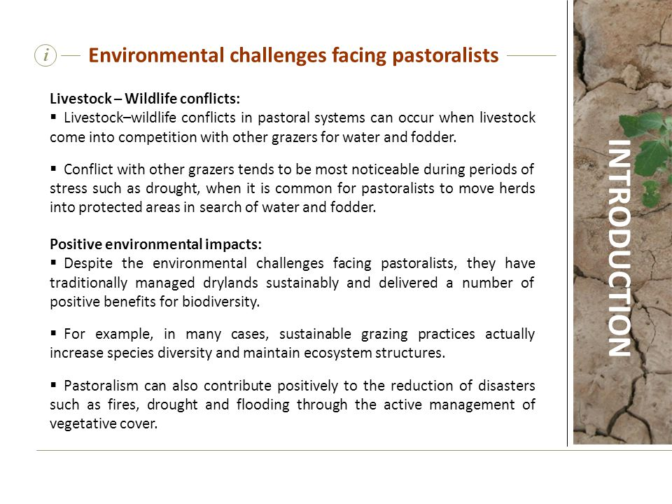 Livestock – Wildlife conflicts:  Livestock–wildlife conflicts in pastoral systems can occur when livestock come into competition with other grazers f