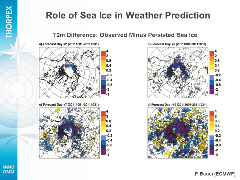 Role of Sea Ice in Weather Prediction T2m Difference: Observed Minus Persisted Sea Ice P.